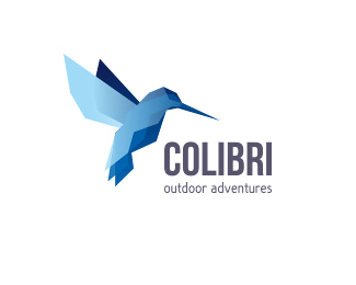 Colibri蜂鳥logo