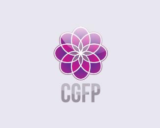 国外财务公司CGFP
