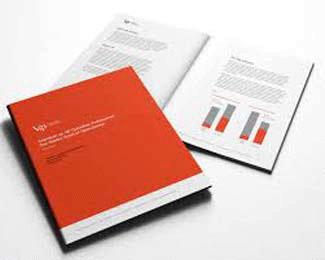 防城港vi手册设计欣赏