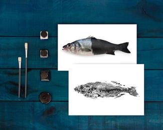 海鱼海鲜产品包装设计欣赏