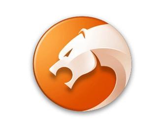 猎豹浏览器标志设计欣赏